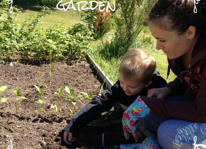 Teaching Kids How to Garden